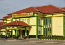 Rumah Sakit Umum Daerah (RSUD) Menggala